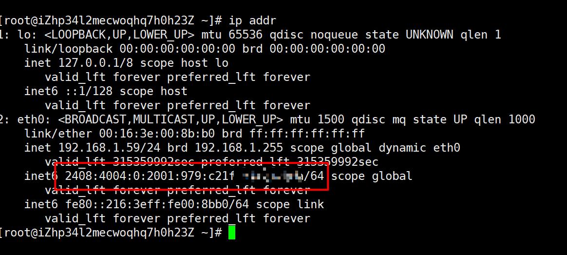阿里云ECS部署 IPv4 IPv6 双栈实践 - 新建篇-米饭粑